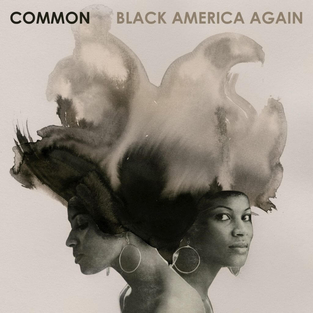 common-black